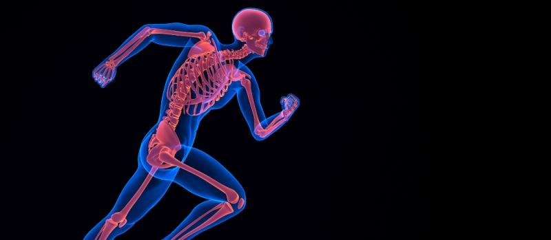 Running 3d skeleton. Contains clipping path
